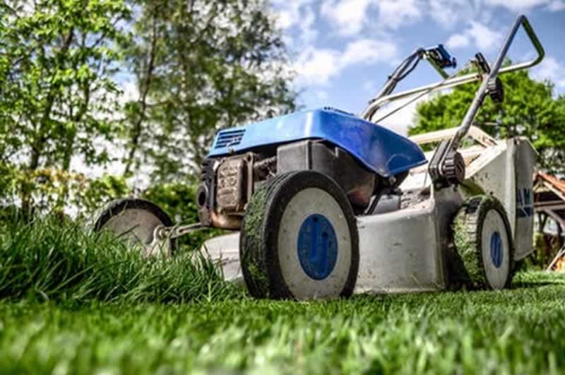 Cortando el pasto Mantenimiento de Parques y Jardines